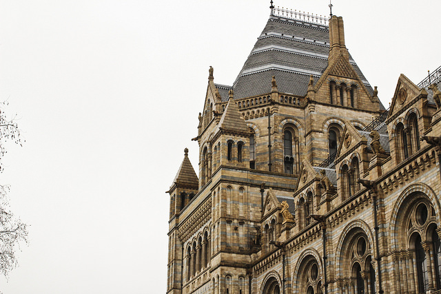A Day Out To: The Natural History Museum