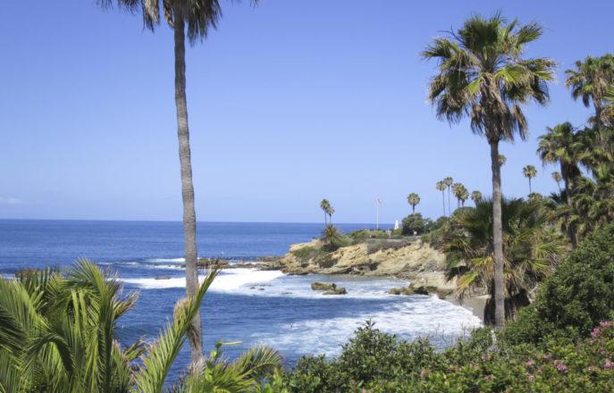 Laguna Beach & Palm Desert